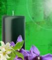 Ambre Vert