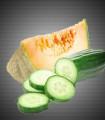 Concombre Melon